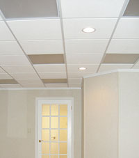 Basement Ceiling Tiles for a project we worked on in Gaithersburg, Maryland